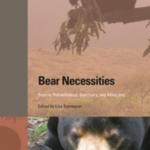 Bear Necessities Book