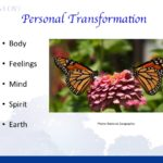 Embody Love: Online Course